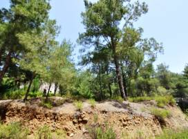 Property on cyprus, Земельный участок for_Sale ID:8140